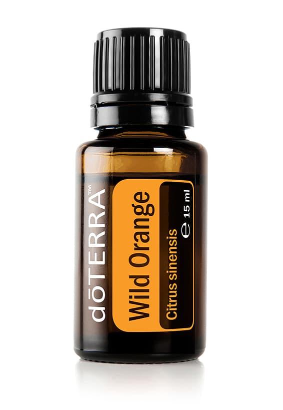 Wild Orange- Citrus sinensis – Wildorange